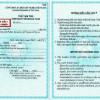 Dịch vụ gia hạn thẻ tạm trú Việt Nam