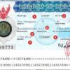 Hồ sơ làm visa Thái Lan cho người nước ngoài